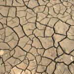 פתרונות גזי קרקע – אל תחכו לנזקים, מנעו אותם!